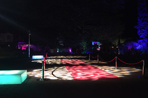 Night Party Decoration