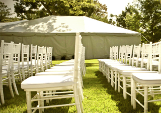 Local events rental los angeles party rentals wedding rentals rental inventory junglespirit