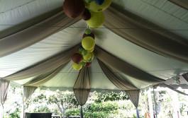 Birthday Tent Rentals